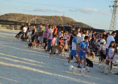 festival-canino-mascota-jardin-2016-497-1024x768