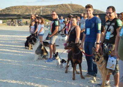 festival-canino-mascota-jardin-2016-499-1024x768