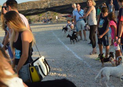 festival-canino-mascota-jardin-2016-502-1024x768