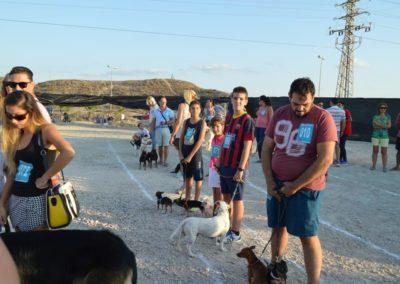 festival-canino-mascota-jardin-2016-503-1024x768
