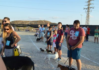 festival-canino-mascota-jardin-2016-504-1024x768
