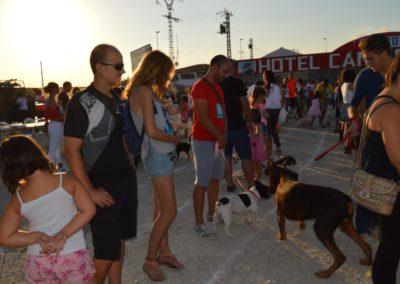 festival-canino-mascota-jardin-2016-505-1024x768
