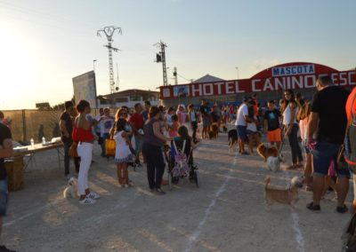 festival-canino-mascota-jardin-2016-507-1024x768