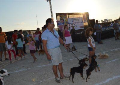 festival-canino-mascota-jardin-2016-514-1024x768