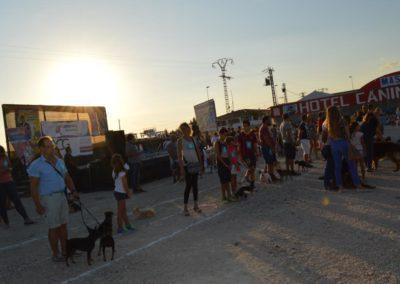 festival-canino-mascota-jardin-2016-516-1024x768