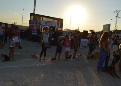festival-canino-mascota-jardin-2016-521-1024x768