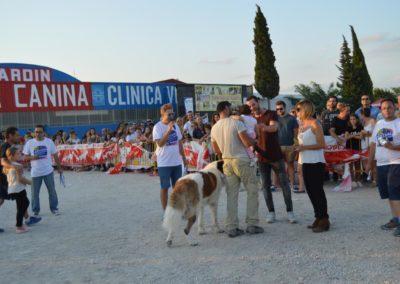 festival-canino-mascota-jardin-2016-571-1024x768