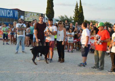 festival-canino-mascota-jardin-2016-605-1024x768