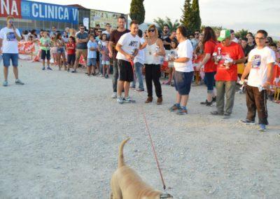 festival-canino-mascota-jardin-2016-630-1024x768