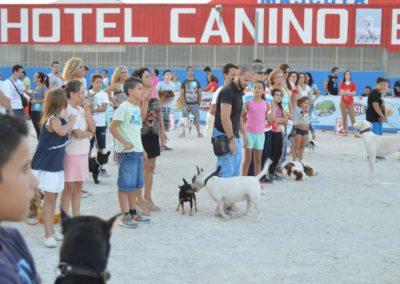 festival-canino-mascota-jardin-2016-735-1024x768