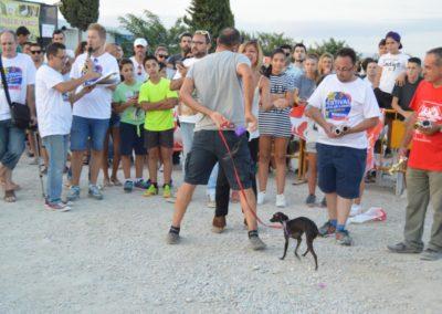 festival-canino-mascota-jardin-2016-737-1024x768
