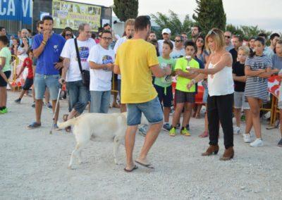 festival-canino-mascota-jardin-2016-747-1024x768
