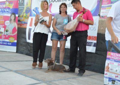 festival-canino-mascota-jardin-2016-774-1024x768